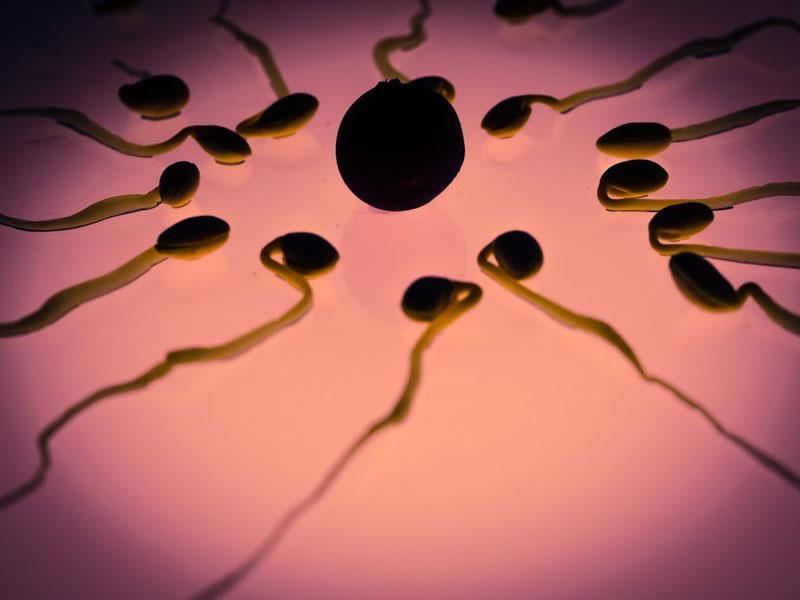 Relaciones sexuales y coronavirus